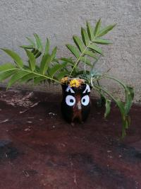 Flower pot owl.